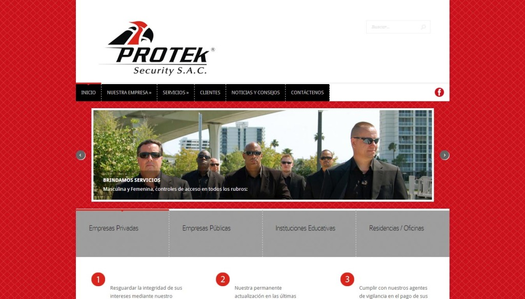 protek security